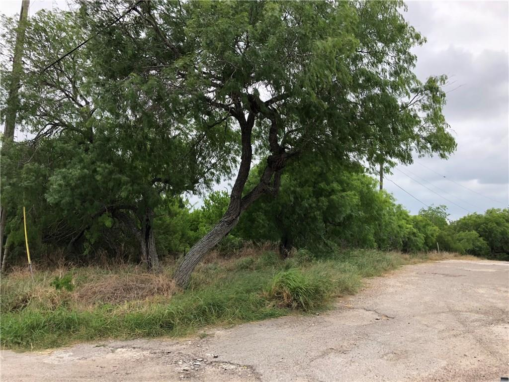 11000 IH 37 @ Sessions, Corpus Christi, Texas 78410, ,Land,For sale,IH 37 @ Sessions,328422